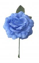 Spanische Flamencorose, blau