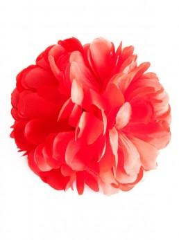 Spanische Haarblume rot, extragroß