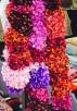 haarbloemen diversen markt